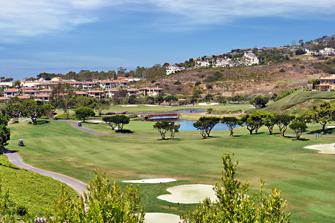 Dana Point Golf Course View Homes | Dana Point Real Estate