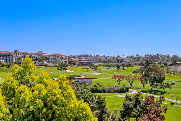 Dana Point Golf Front Homes In Dana Point, California
