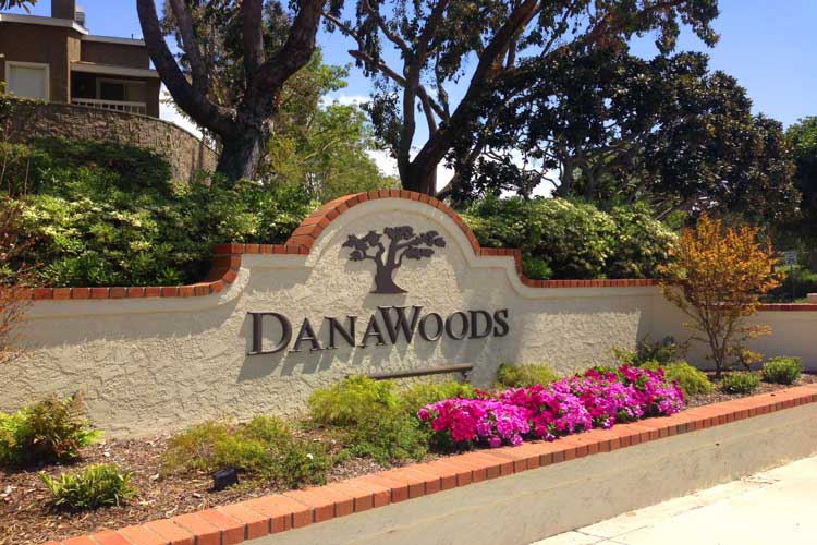 Dana Woods Homes For Sale | Dana Point Real Estate
