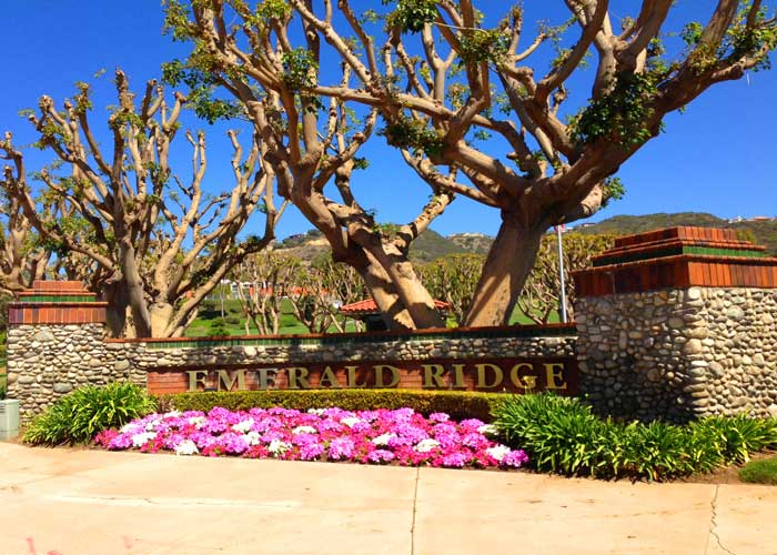 Emerald Ridge Homes | Dana Point Real Estate