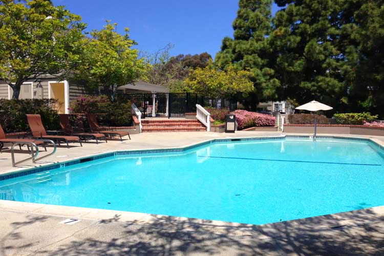 Marinita Community Pool | Dana Point Real Estate