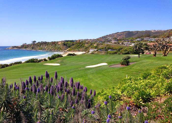 Monarch Beach Ocean Views | Dana Point Real Estate
